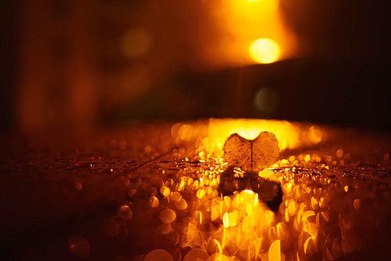 Una notte piovosa d'autunno... di mariateresatoledo