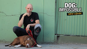 Dog: Impossible: New Leash thumbnail