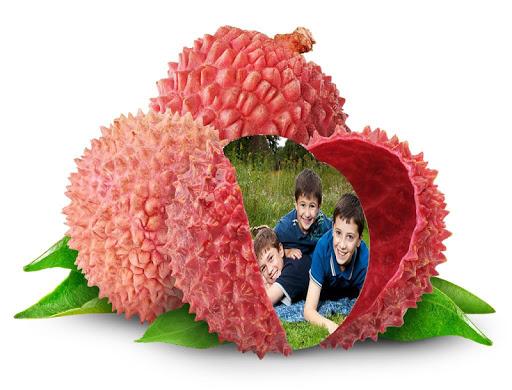Fruit Photo Frame Effect