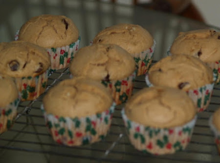 Peanut Butter Chocolate Chip Muffins Recipe