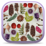App Icon for Dried Botanicals Key App in Czech Republic Google Play Store