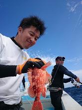 Photo: またまたアラカブ!  「水を得た魚」みたいに根魚釣った時は 幸せそう。