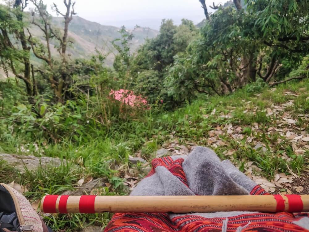 flute+practice+himalayas+hiking+around+dharamshala+himachal+pradesh+india