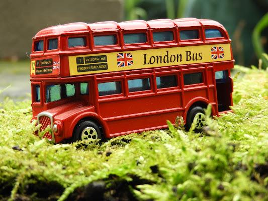 The bus is of the road..... di claudio_sposetti