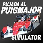 Puig Major Car Racing Simulator 1 (Paid)