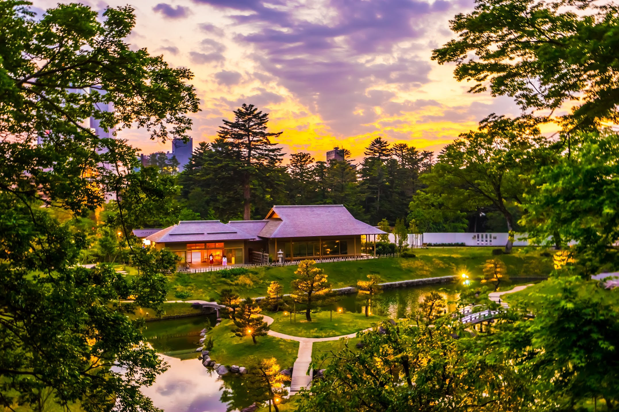玉泉院丸庭園 ライトアップ1