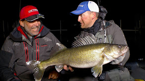 Fly By Night: Hit Stick Baits for Big Fall Walleye thumbnail