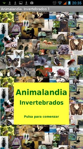 Animalandia Invertebrados 1