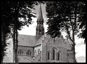 Photo: Die Klosterkirche der Zisterzienser, welches im Jahre 1193 hier begündet wurde. (Kloster Løgumkloster). Das Münster gilt als eine der schönsten Kirchenbauten des dänischen Mittelalters.
