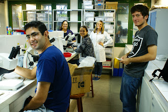 Photo: A curadora do ISE, Marcela Cáceres, entre seus alunos e bolsistas no laboratório de liquenologia no campi de  Itabaiana da Universidade Federal de Sergipe.