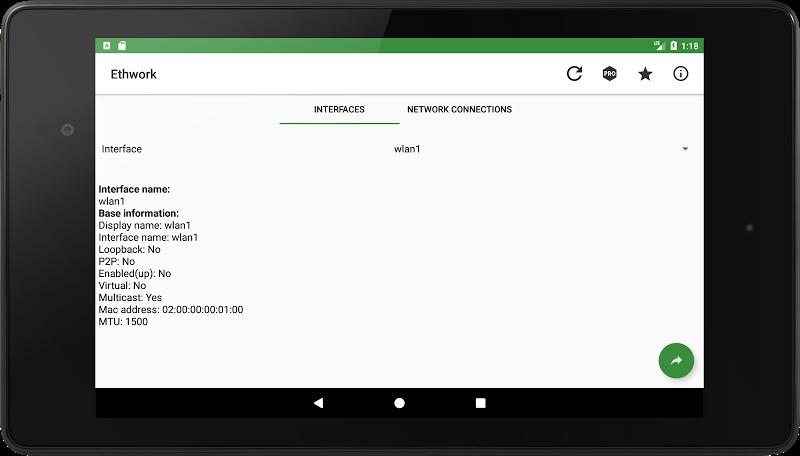Ethwork: Netstat & Network Interfaces Screenshot 4