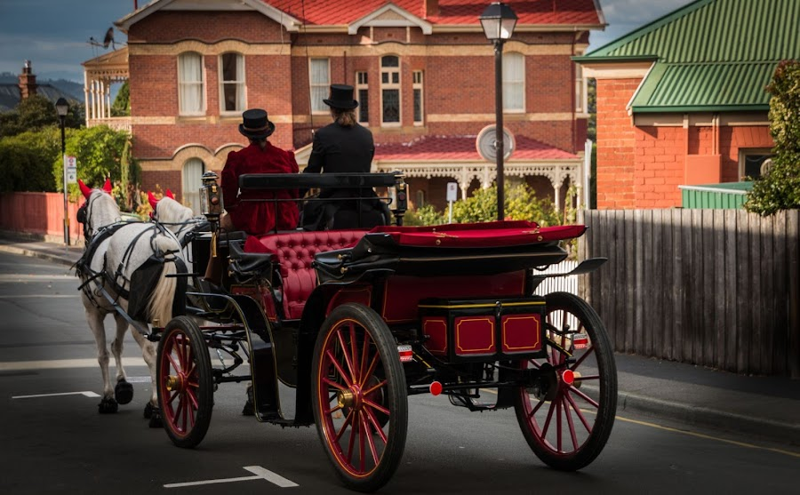 Royal And Regal by Leoni Williams - Animals Horses ( yesteryear, horses, carriage, royal, tours )