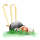 Tez Shots Cricket Game Android apk