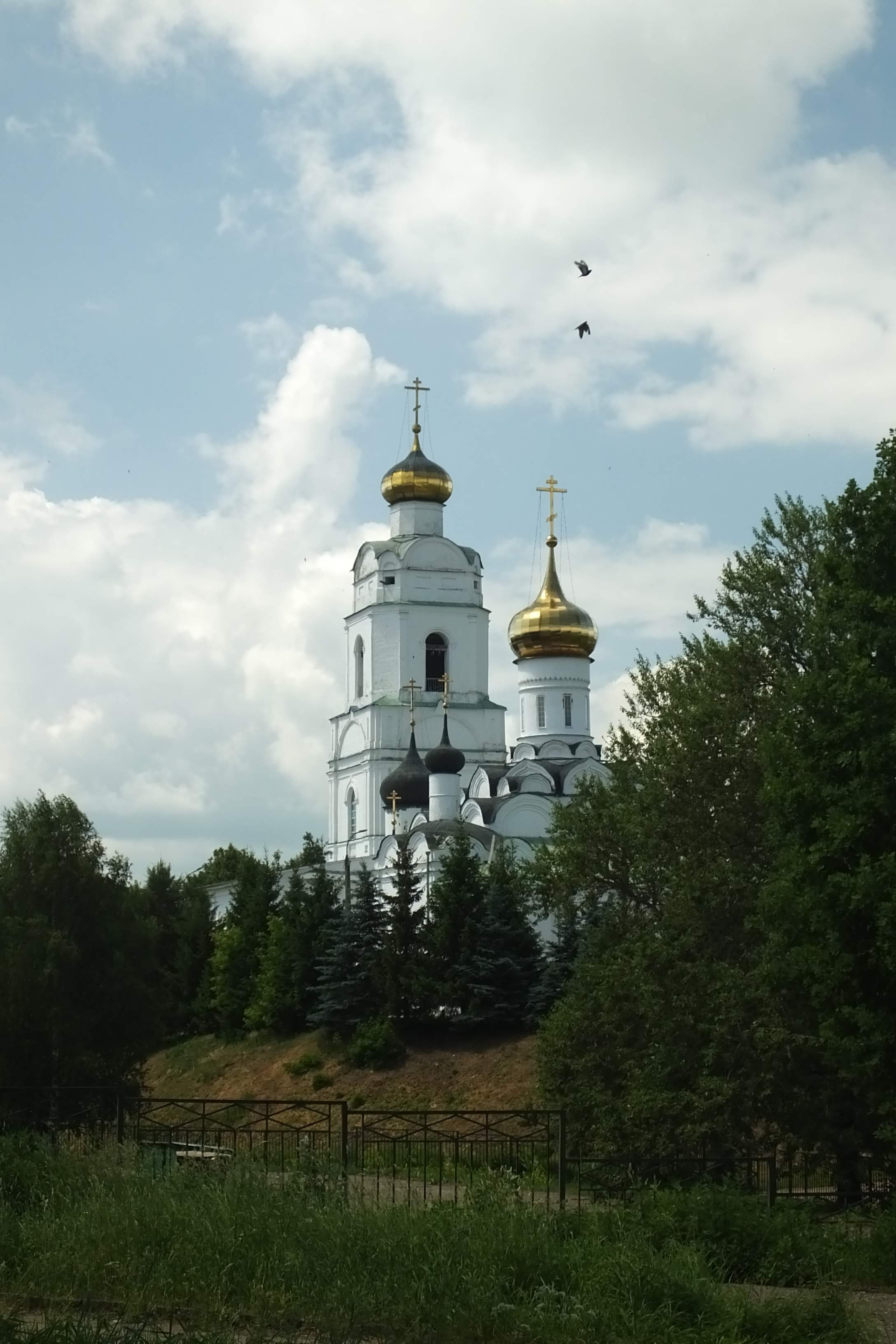 Вязьма - 780, День города