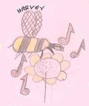 Photo: Harvey's bee is buzzing with excitement.