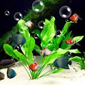 Aquarium Live Wallpaper Free icon