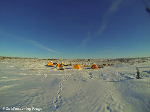 Arctic Canada Inuvik Winter Camping Tundra Dog Sledding // Our campsite on the Arctic tundra