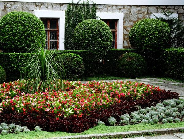 garden 1.jpeg