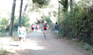 Photo: Ciclabile nella Pineta di Cecina