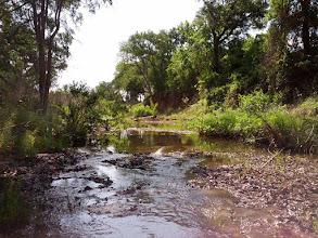 Photo: Creek Crossing (downstream view)