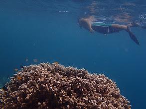 Photo: Nick, the resorts snorkeling guide at Sand Island, Palawan, Philippines.
