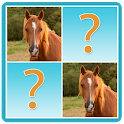Farm Animals Memory Match Game icon