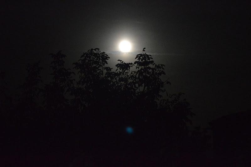 the moon di vicky.serra.90