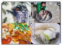 山霸王活魚土雞餐廳