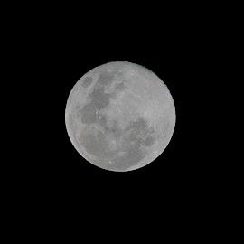 March 21, 2019 MOON by Empty Deebee - Black & White Landscapes ( moon, full moon )