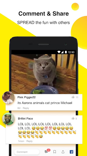 BuzzVideo: Viral Videos, Funny GIFs & TV shows for PC