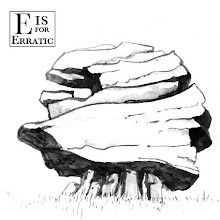 Photo: Maggie Ruddy - Alphabet of Physical Geography - e is for Erratic
