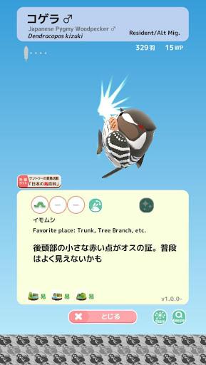 Tori Watch 2 - fluffy small birds - android2mod screenshots 6