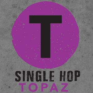 Logo of Hermitage Topaz