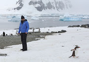 Stranger Things' actor David Harbour looks at a penguin on Danco Island, Errera Channel, Antarctica, February 14, 2018. Picture taken February 14, 2018.
