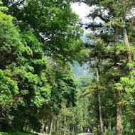 【內灣老街】熱帶雨林咖啡館