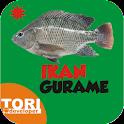 Budidaya Ikan Gurame icon