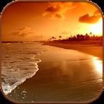 HD Beach Sunset Live Wallpaper Icon