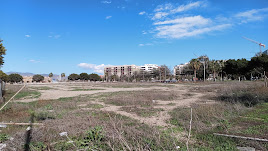 Parcela para la construcción de un colegio en la Vega de Acá.