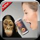 Translator Monkey Simulator