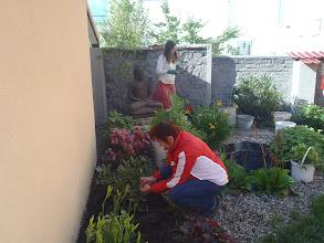Photo: očista rostlinek