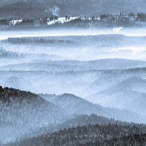 Mountain waves by Adrian LUPSAN - Landscapes Mountains & Hills ( transilvania, winter, mountain, fog )