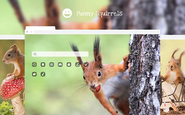 Funny Squirrels HD Wallpaper New Tab Theme