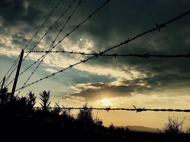 A un passo dalla libertà  di Ari