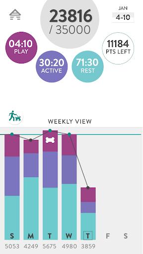 免費下載健康APP|FitBark Beta app開箱文|APP開箱王