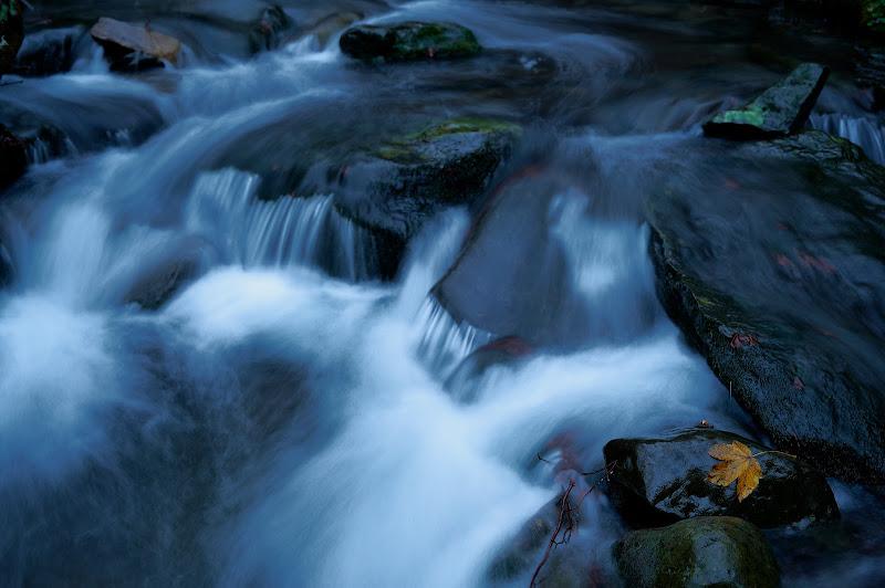 Mystic River di iSimo