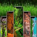 nature 4k wallpaper icon