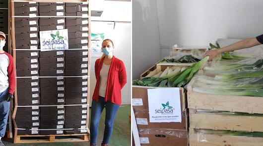 Seipasa dona dos toneladas de fresas ecológicas y hortalizas de residuo cero