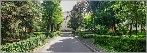 Photo: Calea Victoriei, Nr.11,13 - spatiu verde -  2017.06.07
