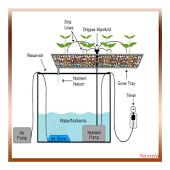 Hydroponic Grow System Android APK Download Free By YEREMIA