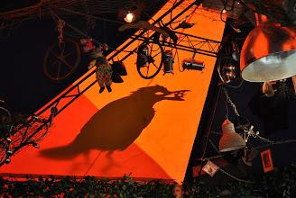 Photo: The Crow
